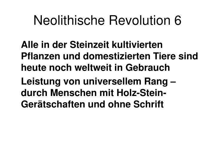 Neolithische Revolution 6