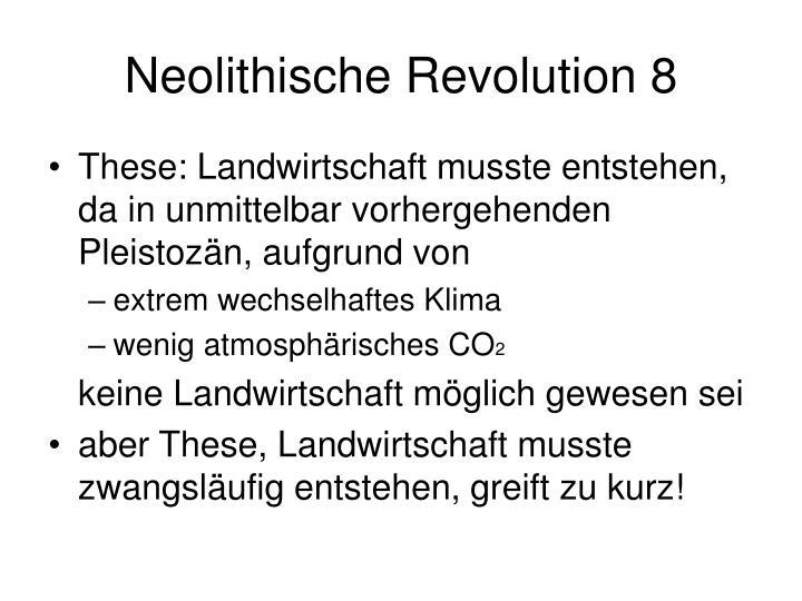 Neolithische Revolution 8