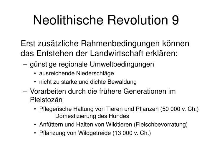 Neolithische Revolution 9