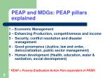 peap and mdgs peap pillars explained