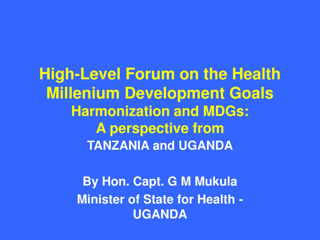 High-Level Forum on the Health Millenium Development Goals