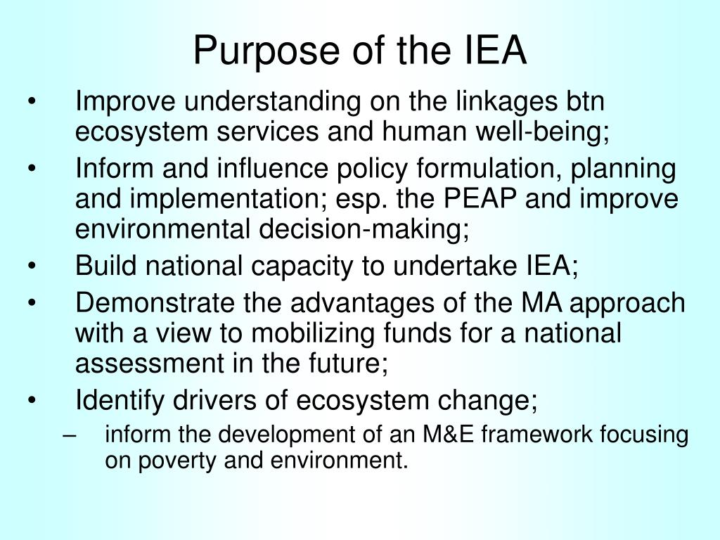 Purpose of the IEA