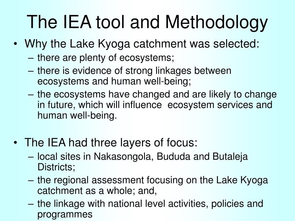 The IEA tool and Methodology