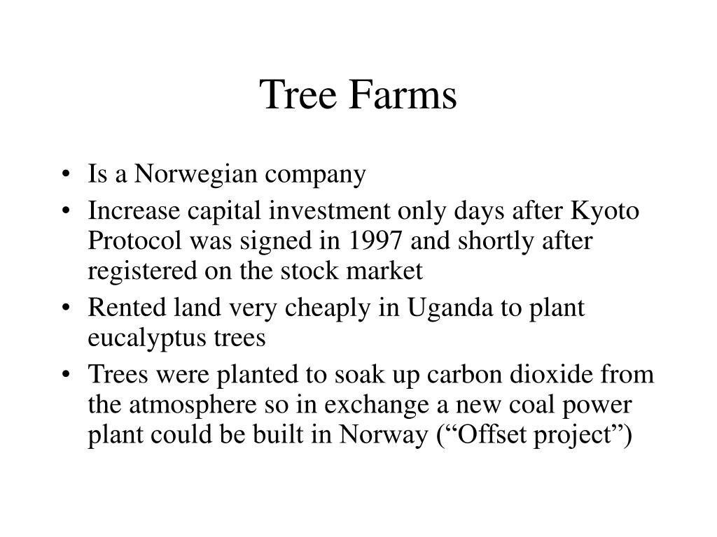 Tree Farms