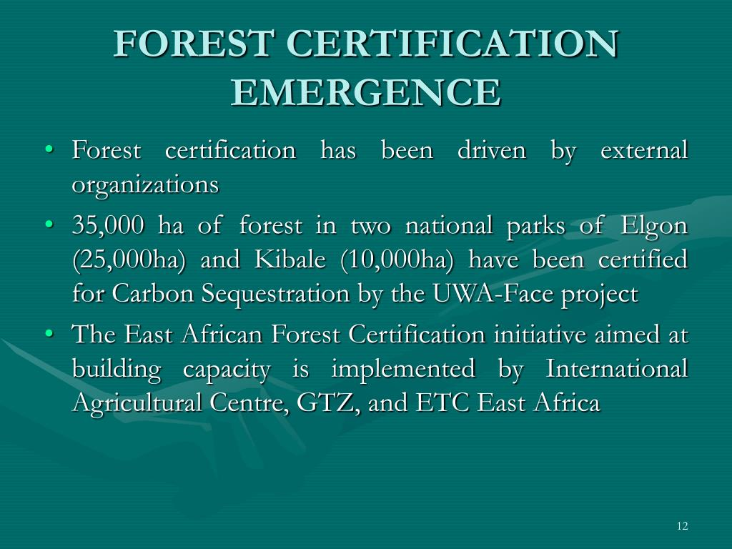 FOREST CERTIFICATION EMERGENCE
