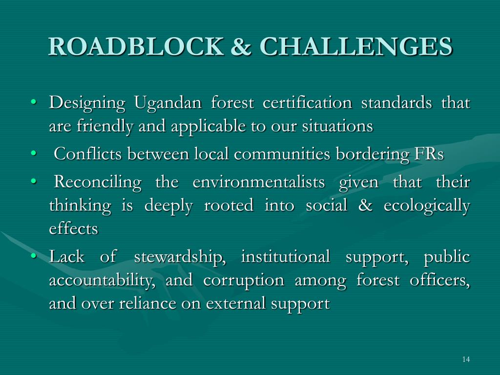 ROADBLOCK & CHALLENGES