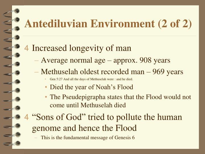 Antediluvian Environment (2 of 2)
