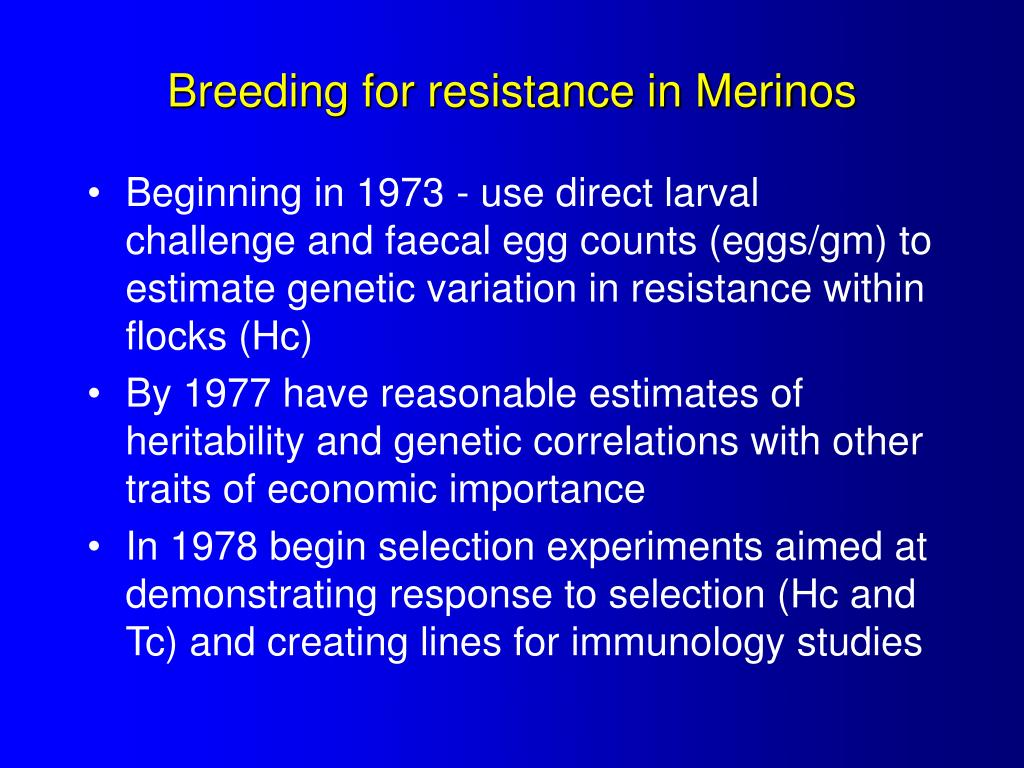 Breeding for resistance in Merinos