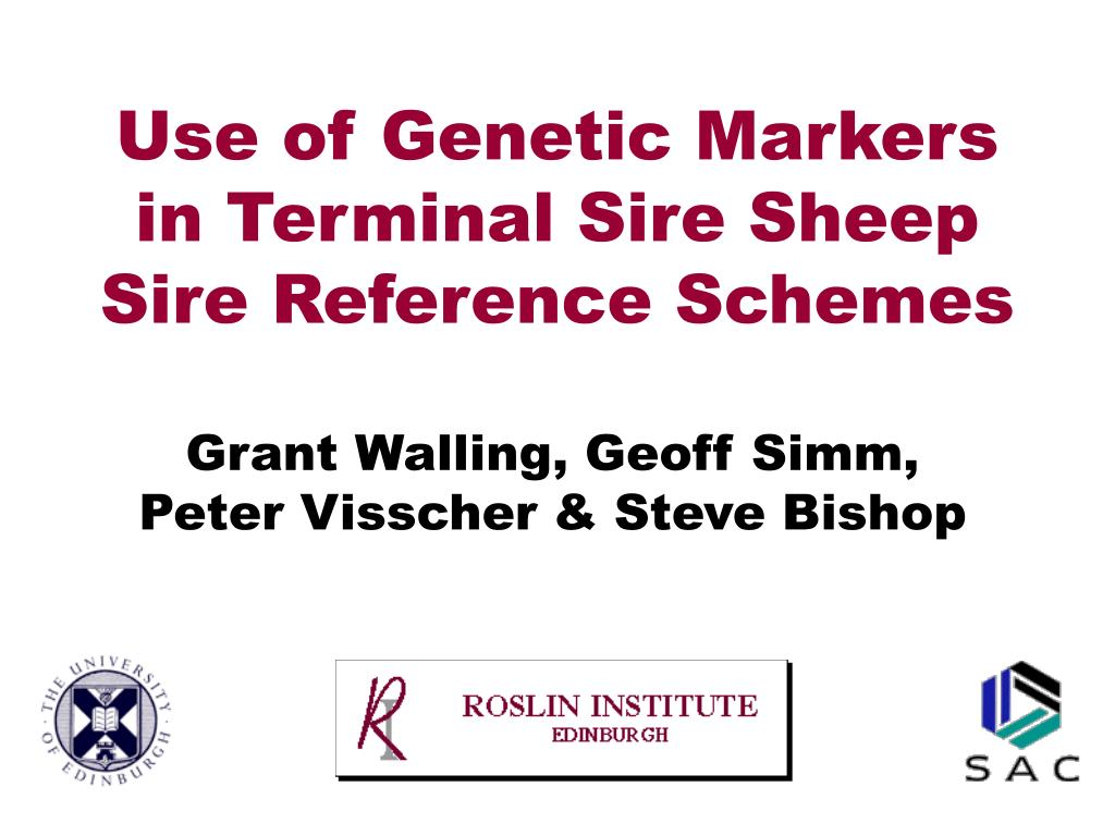 Use of Genetic Markers in Terminal Sire Sheep Sire Reference Schemes