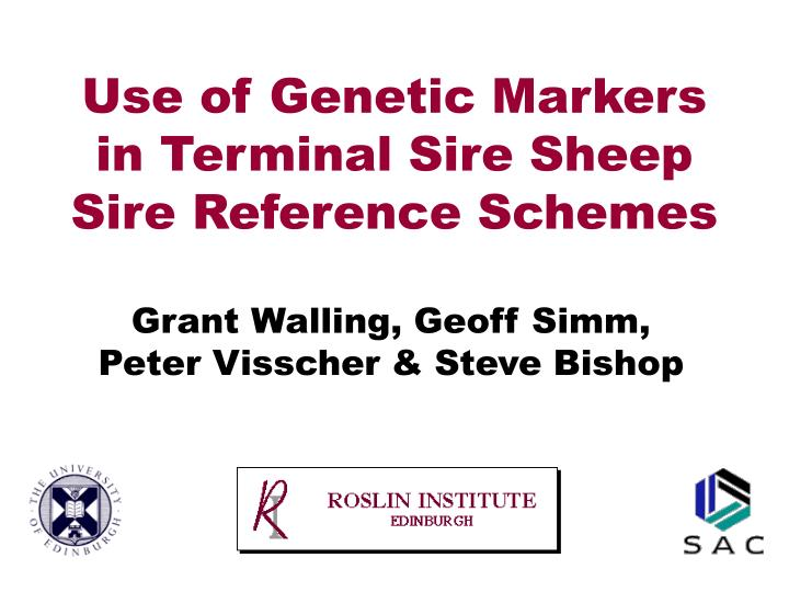 Use of genetic markers in terminal sire sheep sire reference schemes l.jpg