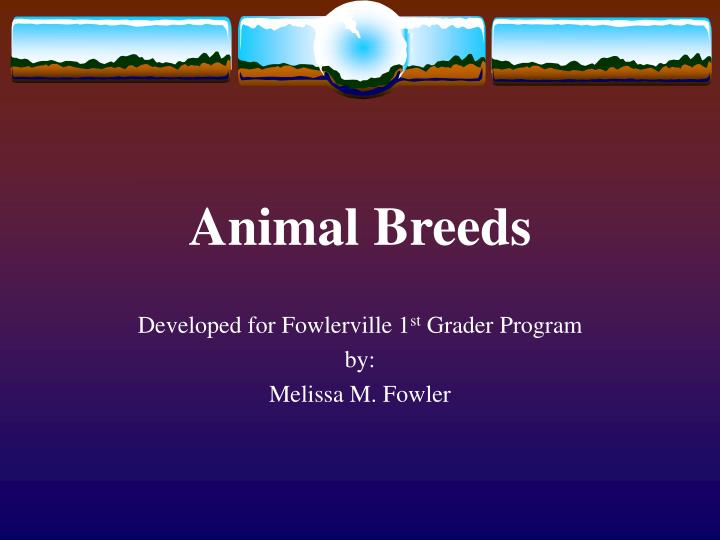 Animal breeds l.jpg