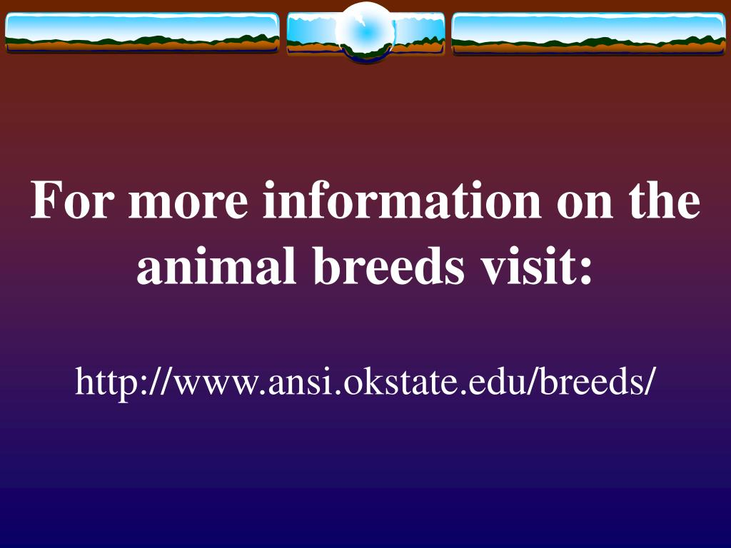 For more information on the animal breeds visit: