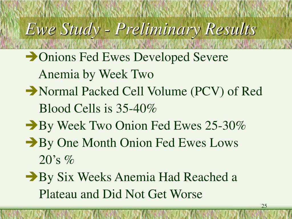 Ewe Study - Preliminary Results