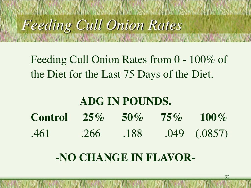 Feeding Cull Onion Rates