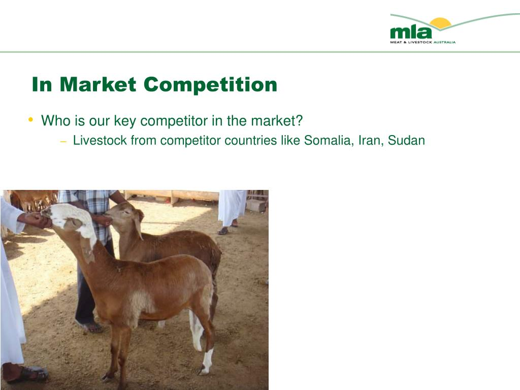 In Market Competition