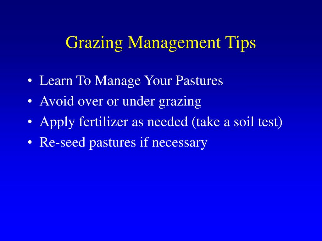 Grazing Management Tips