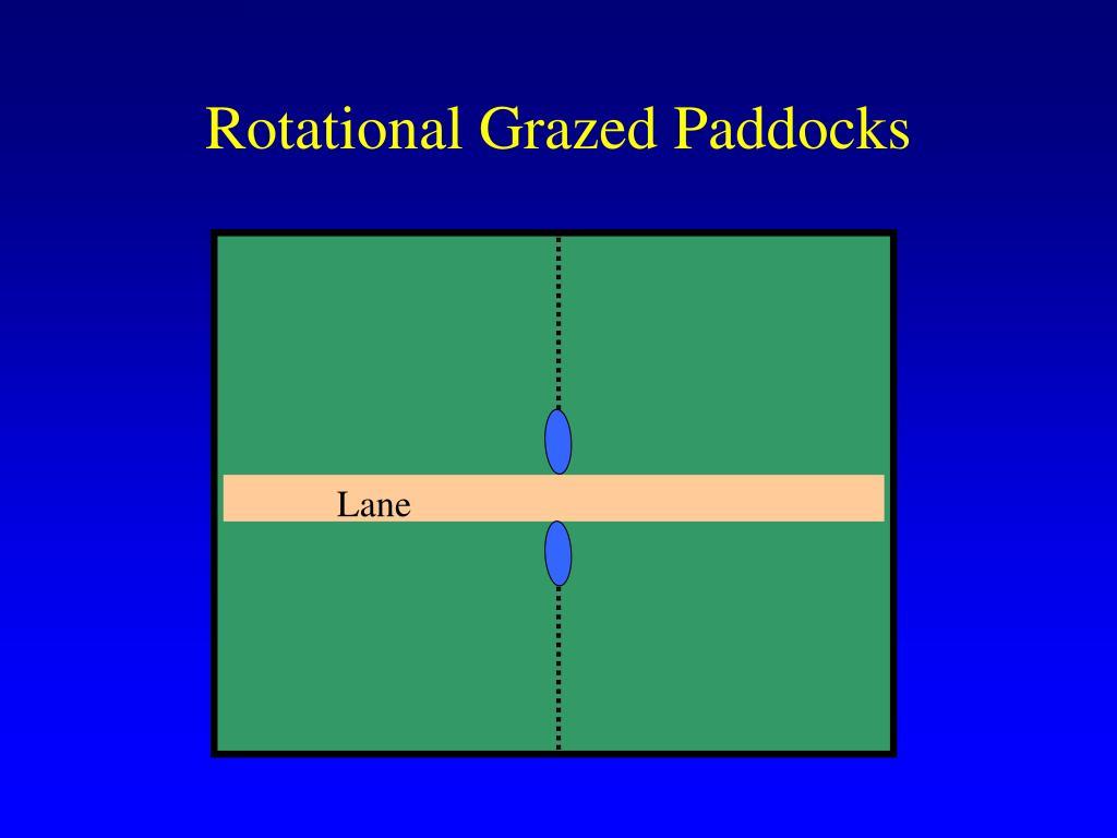 Rotational Grazed Paddocks