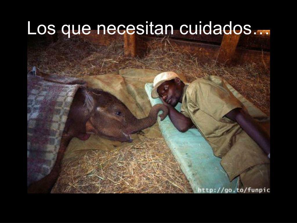 Los que necesitan cuidados…