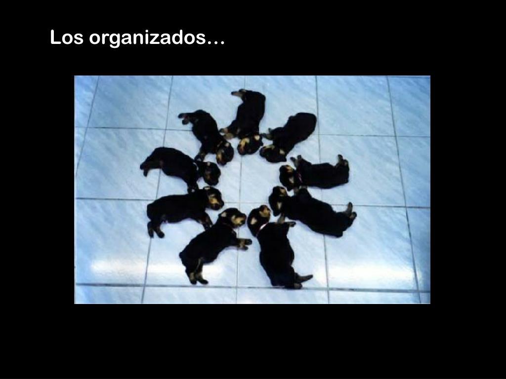 Los organizados…