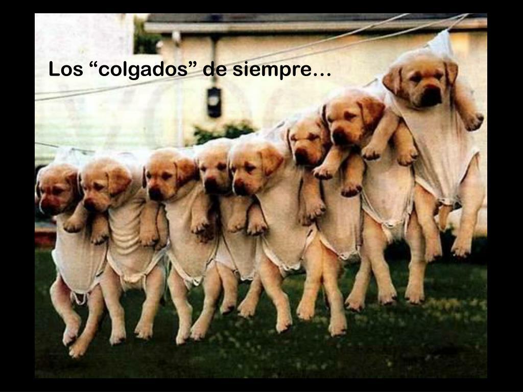 """Los """"colgados"""" de siempre…"""