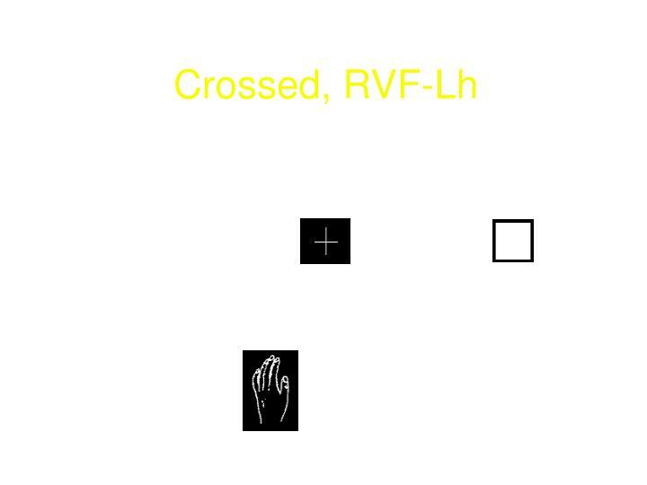 Crossed, RVF-Lh