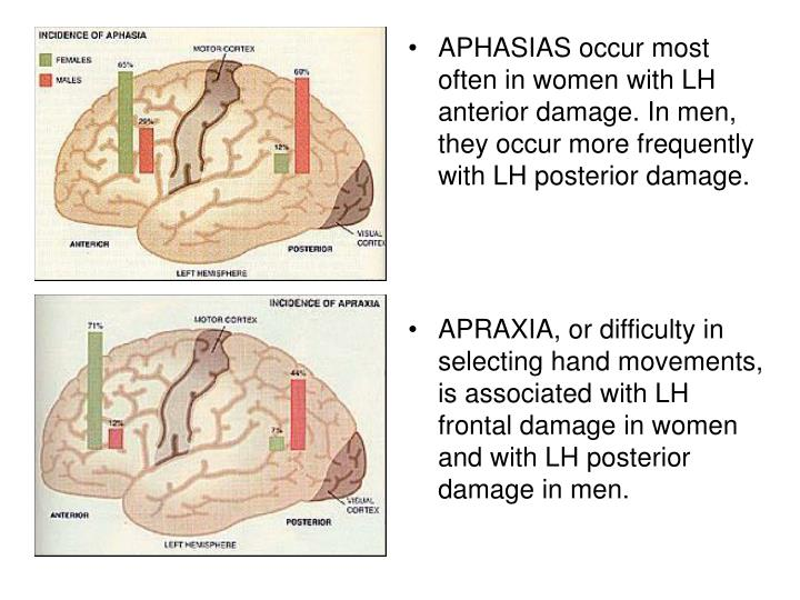 APHASIAS occur most often in women with LH anterior damage. In men, they occur more frequently with LH posterior damage.