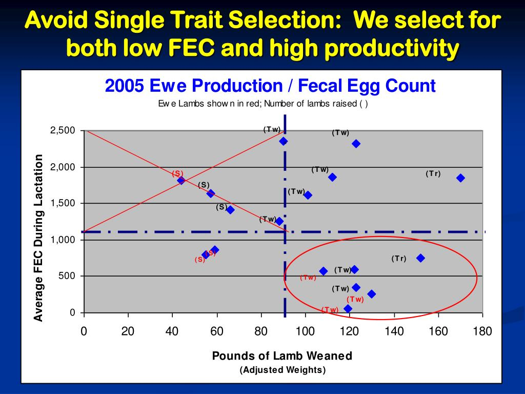 Avoid Single Trait Selection:  We select for both low FEC and high productivity