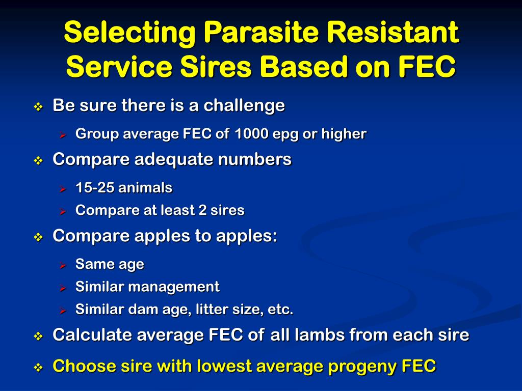 Selecting Parasite Resistant Service Sires Based on FEC