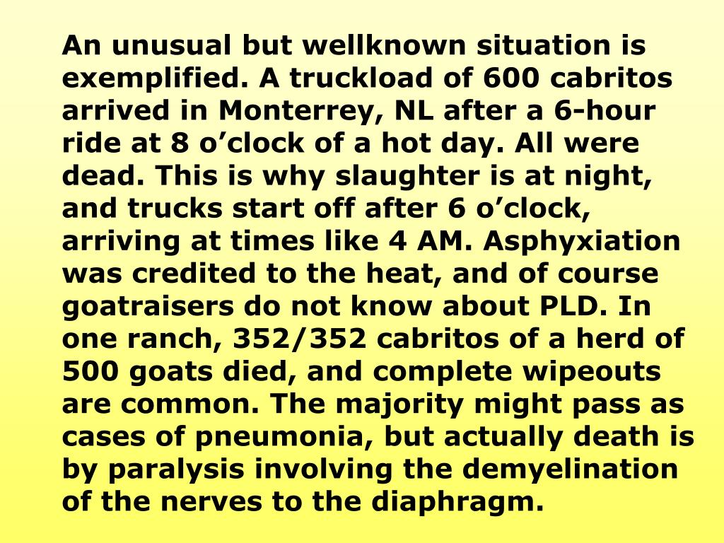 An unusual but wellknown situation is exemplified. A truckload of 600 cabritos arrived in Monterrey, NL after a 6-hour ride at 8 o'clock of a hot day. All were dead. This is why slaughter is at night, and trucks start off after 6 o'clock, arriving at times like 4 AM. Asphyxiation was
