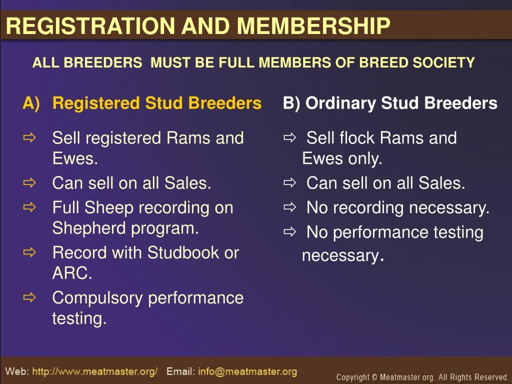 Registered Stud Breeders