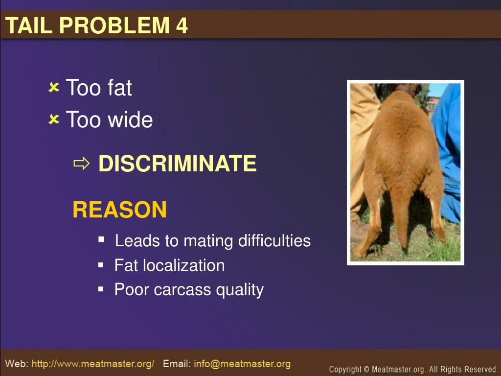 TAIL PROBLEM 4