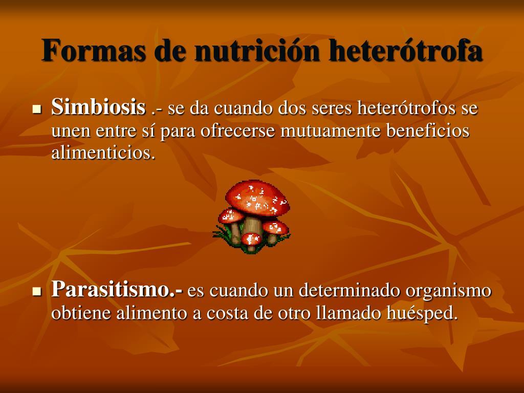 Formas de nutrición heterótrofa