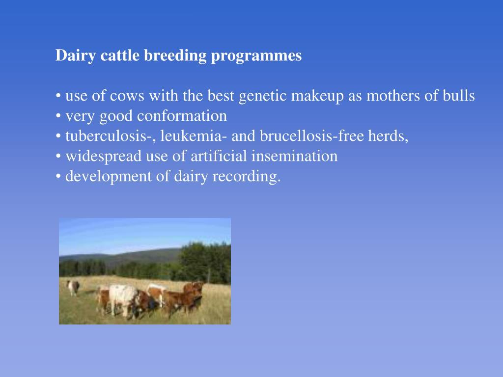 Dairy c