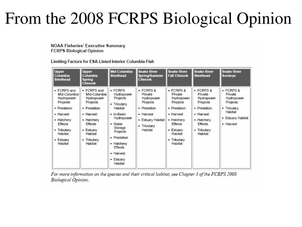 From the 2008 FCRPS Biological Opinion