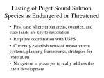 listing of puget sound salmon species as endangered or threatened