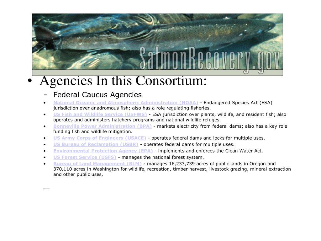 Agencies In this Consortium: