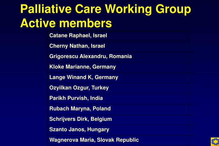 Palliative care working group active members