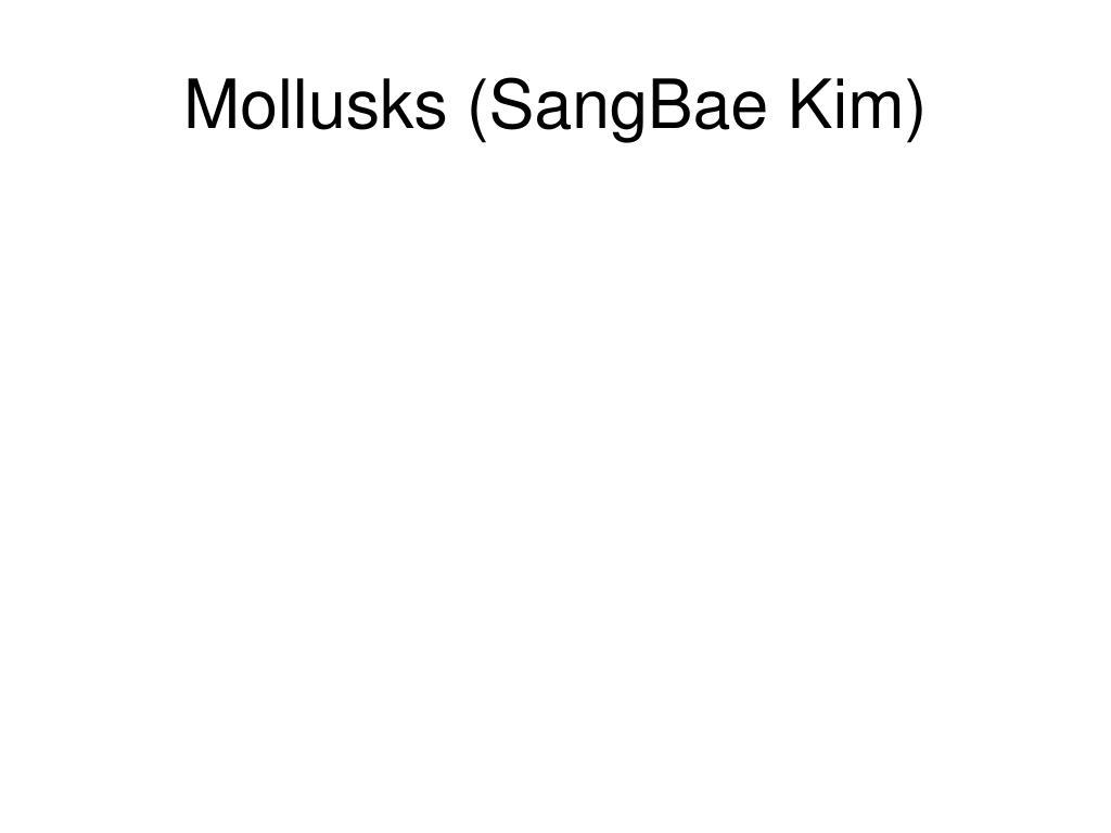 Mollusks (SangBae Kim)