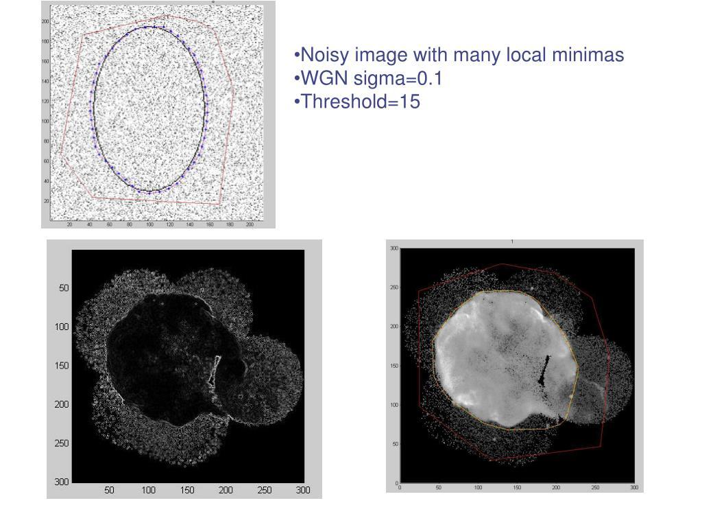 Noisy image with many local minimas