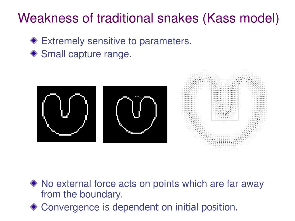 Weakness of traditional snakes (Kass model)