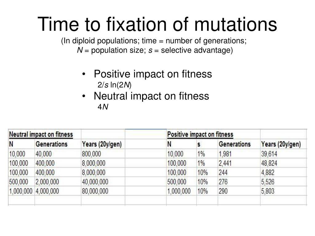 Time to fixation of mutations