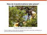 regreening of the sahel