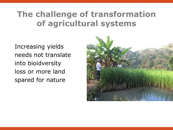 The challenge of transformation of agricultural systems
