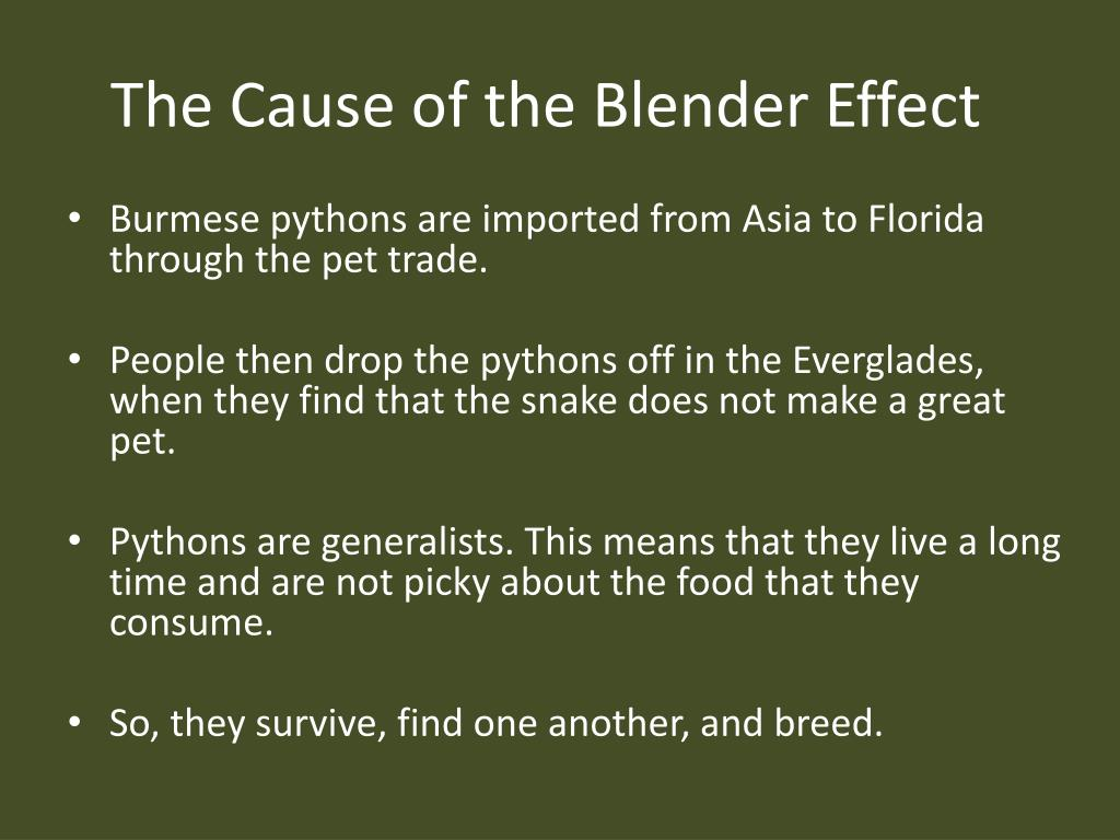 The Cause of the Blender Effect