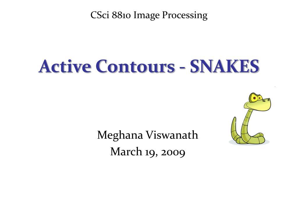 CSci 8810 Image Processing