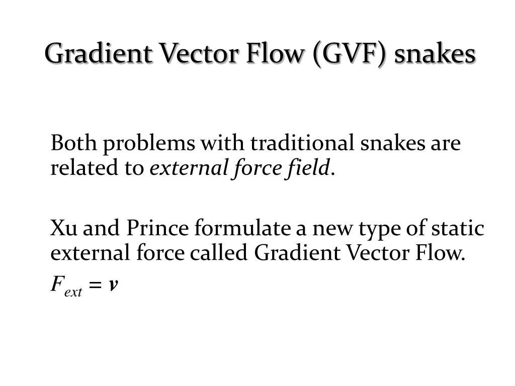 Gradient Vector Flow (GVF) snakes