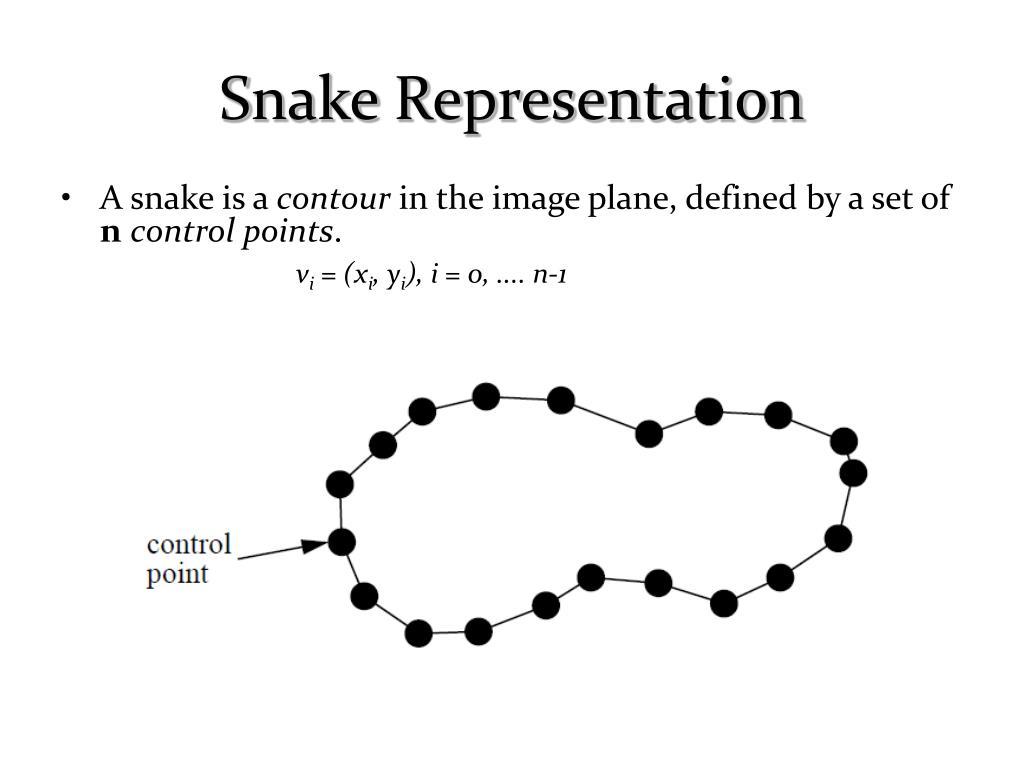 Snake Representation
