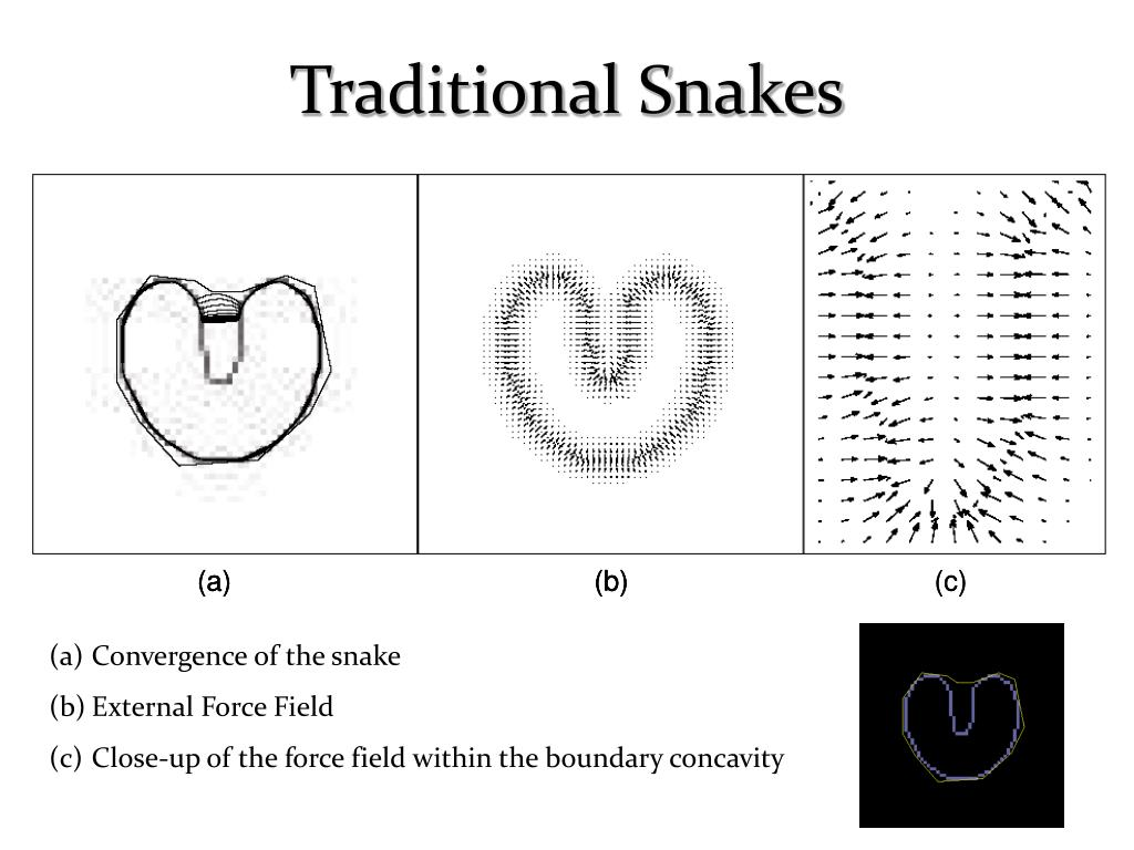 Traditional Snakes