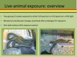live animal exposure overview