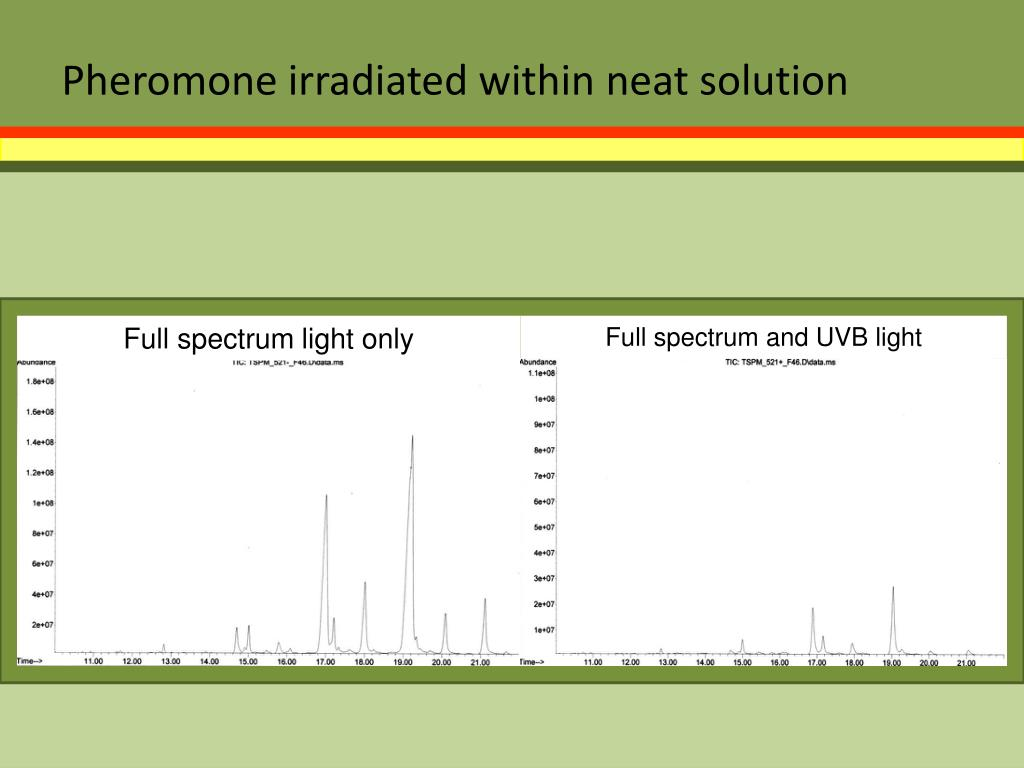 Pheromone irradiated within neat solution